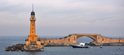 1 Day Tour in Alexandria