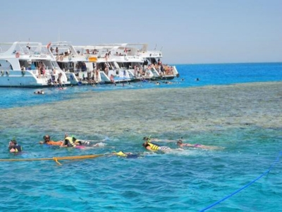 Day Trip to Tiran Island from Sharm el Sheikh